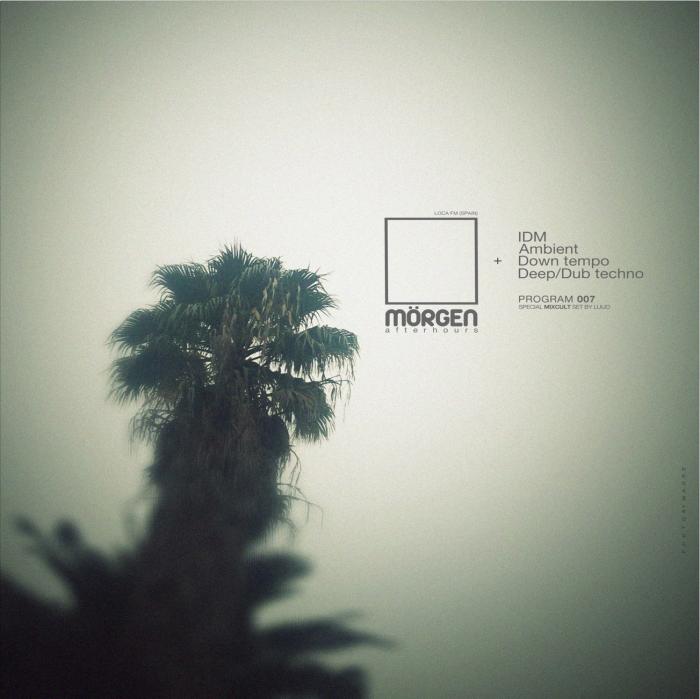 MORGEN FM 007 - LUIJO